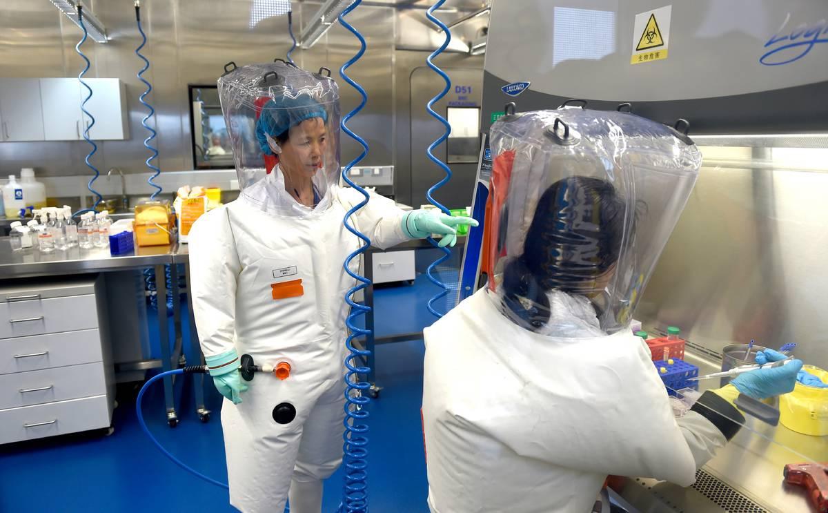 Covid 19 coronavirus: Wuhan lab head Wang Yanyi breaks her silence