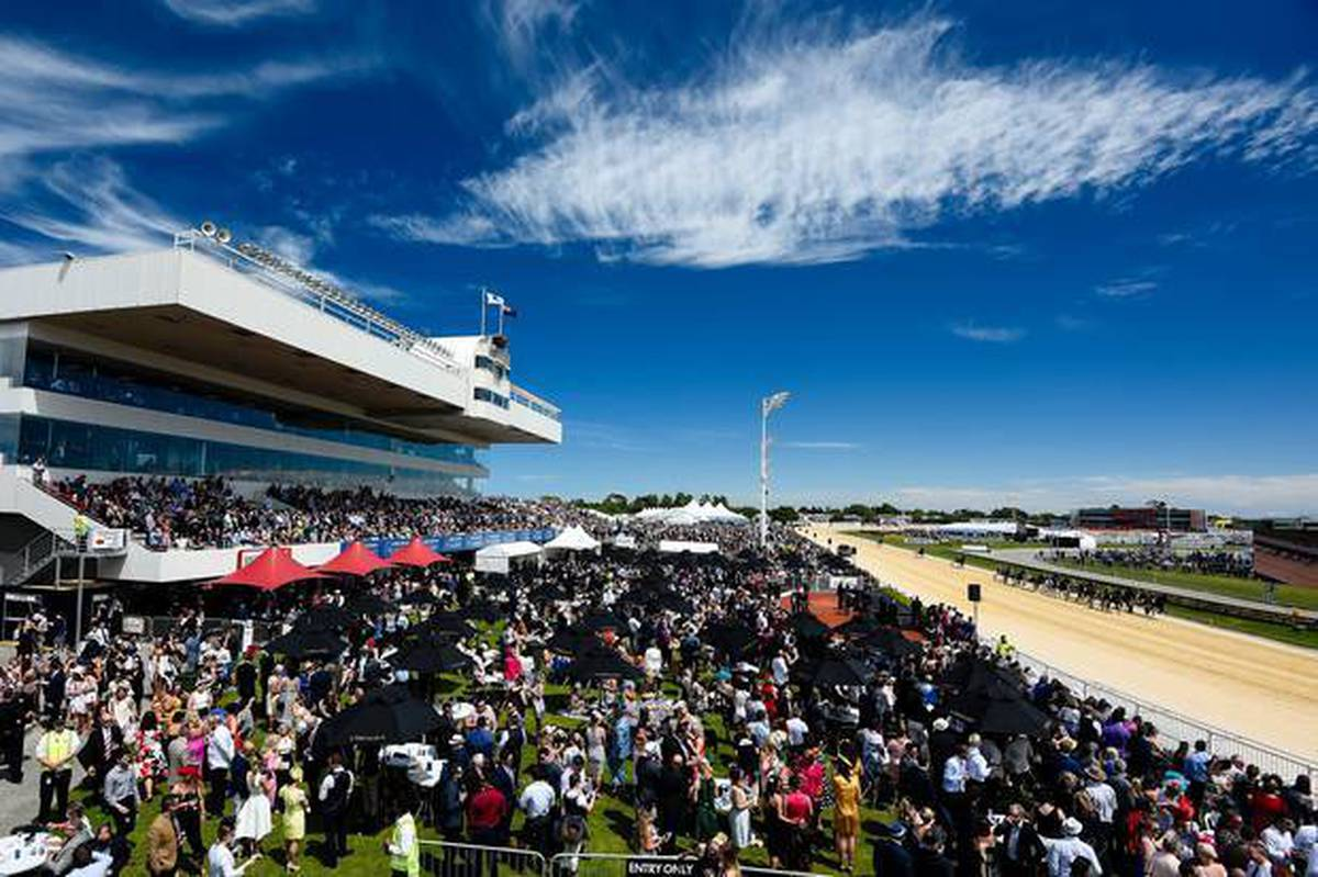 Cup Day at Addington: Big crowd expected for biggest day on Canterbury's social calendar - NZ Herald
