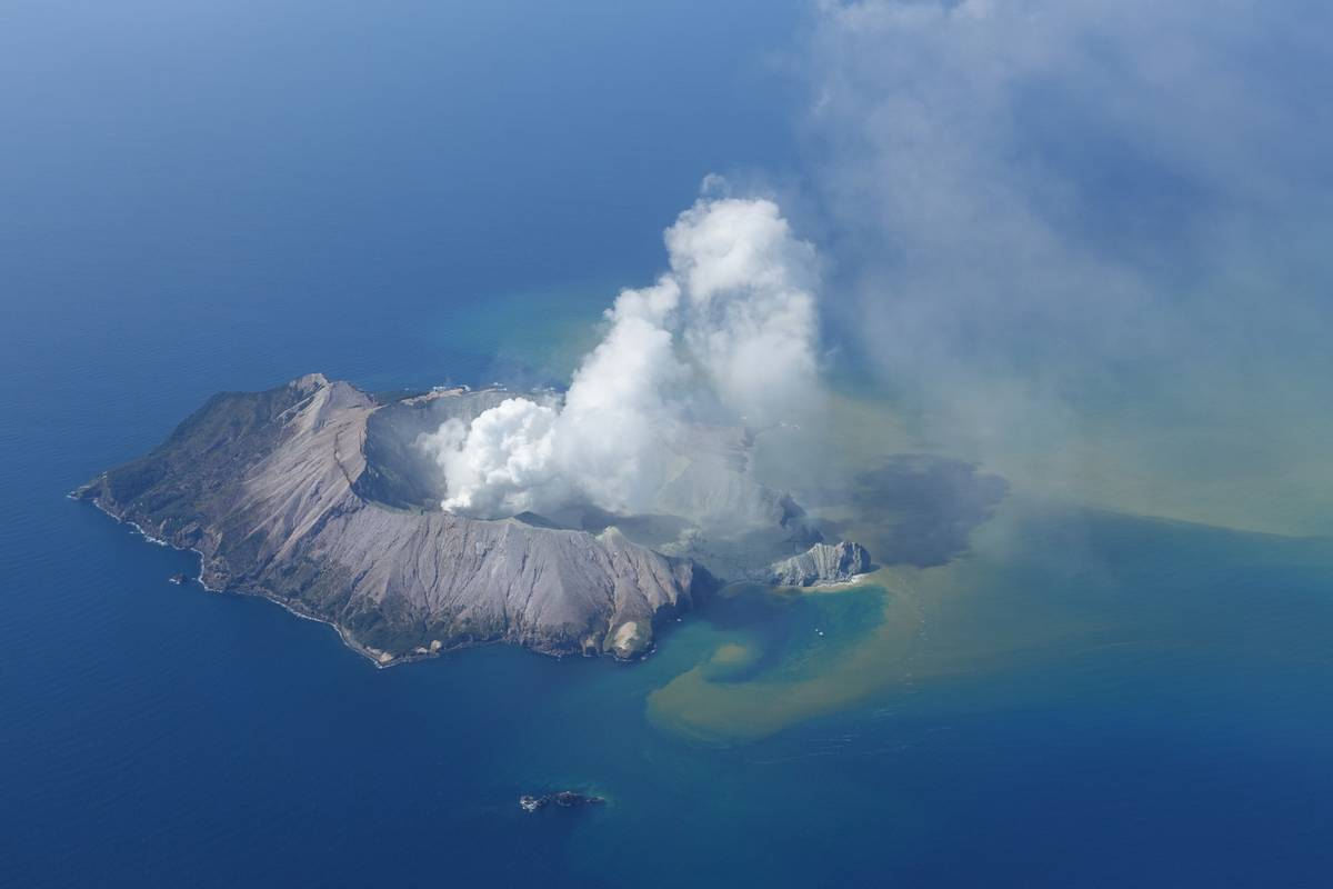 How did White Island's famous sea life fare in eruption?