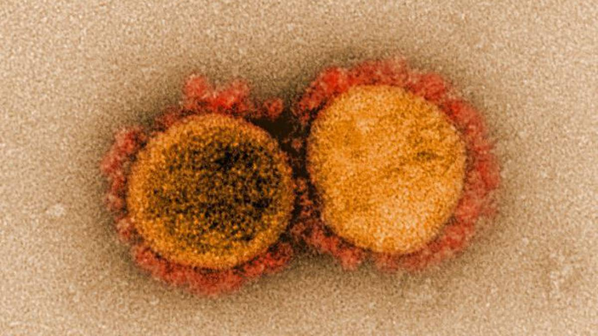 Covid-19 coronavirus: Superspreader - woman infects 71 people in 60 seconds in elevator: CDC study - NZ Herald