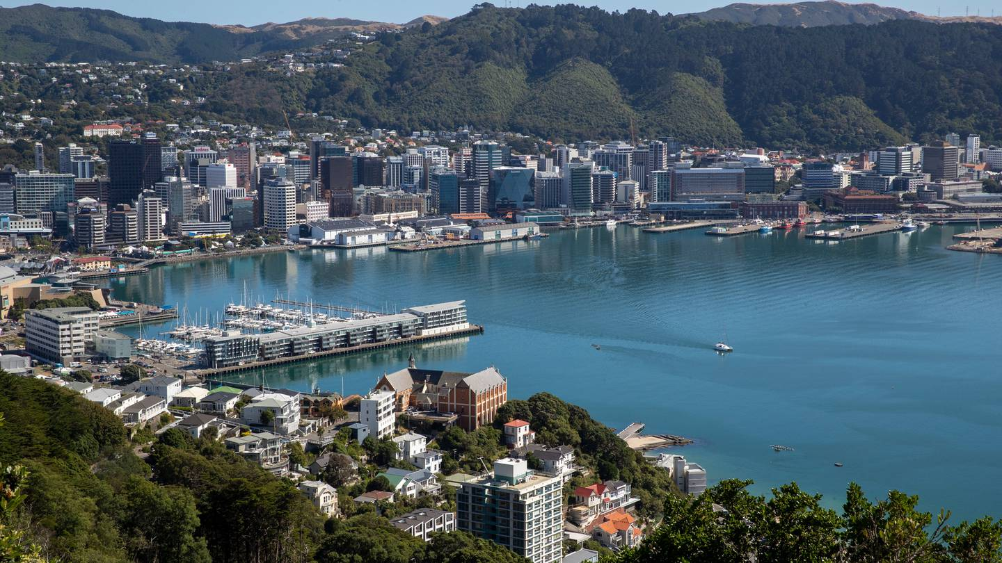 Property values in Wellington increased by 3.1 per cent in May, taking the average house price to just over $1 million. Photo / Mark Mitchell