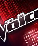 A former star of The Voice Australia has allegedly endured a series of assaults that are before court.
