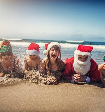 Image result for new zealand christmas""