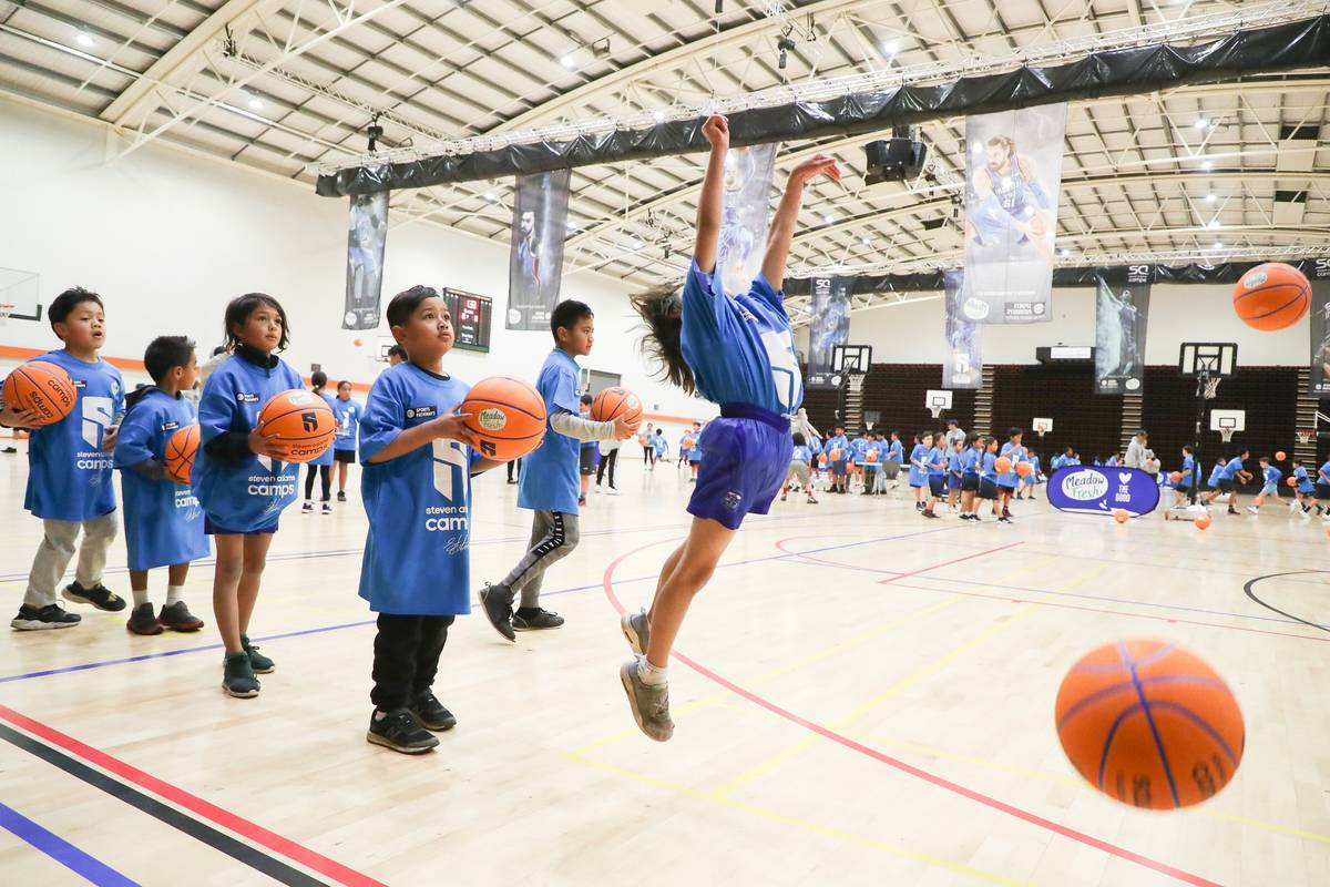 From three courts to 11: Pettigrew Green Arena to get massive $6m expansion