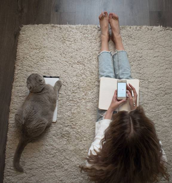 : New app which can translate your cat's meow - NZ Herald