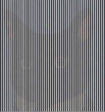 Can You Spot The Hidden Animal In This Optical Illusion Nz Herald