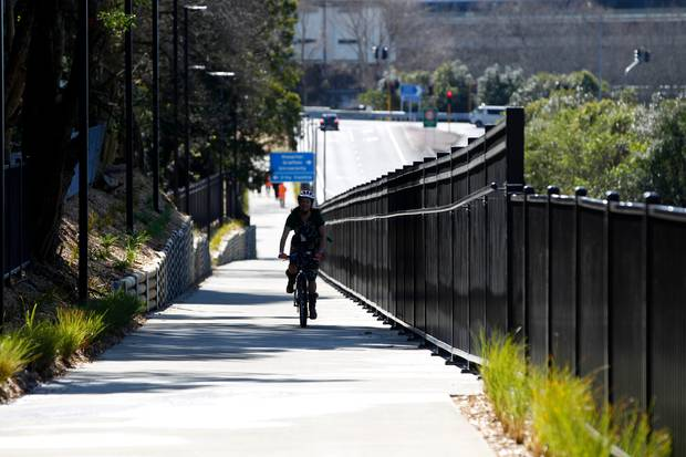 The Grafton Gully Cycleway in Auckland.