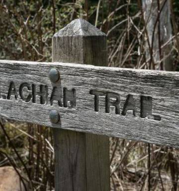 Appalachian Trail attack: Hiker played dead to escape knife