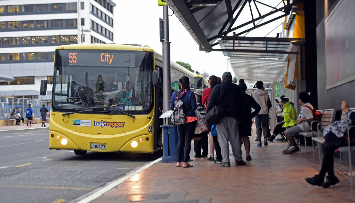 Free bus travel across the city for World Car Free Day