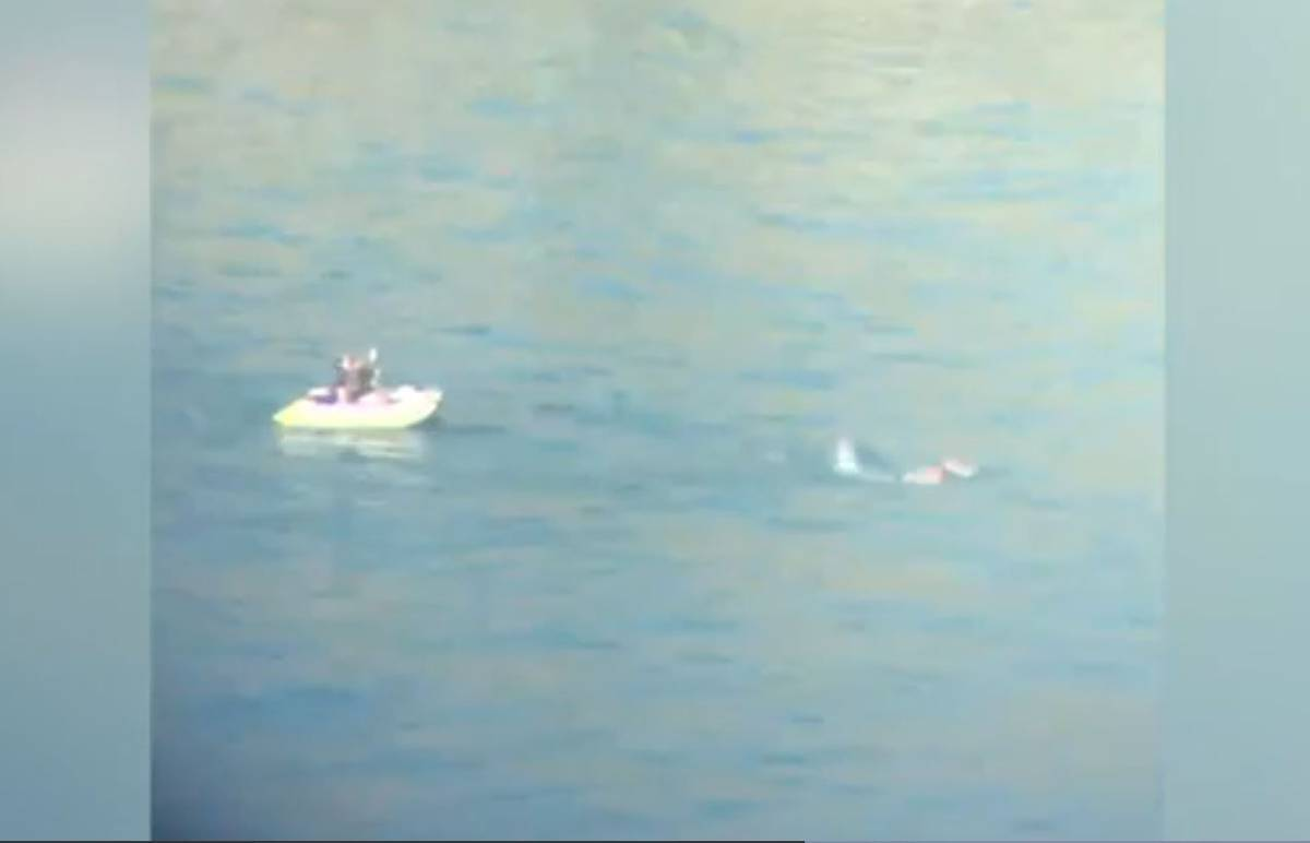 Watch: Sumner swimmer tries to tow boat back to shore after it runs out of petrol