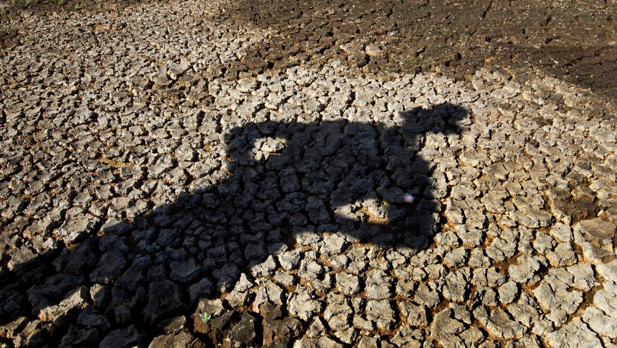 NZ's big dry and climate change: What's the link?