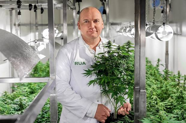 Manu Caddie, the president of the New Zealand Medical Cannabis Council. Photo / Supplied