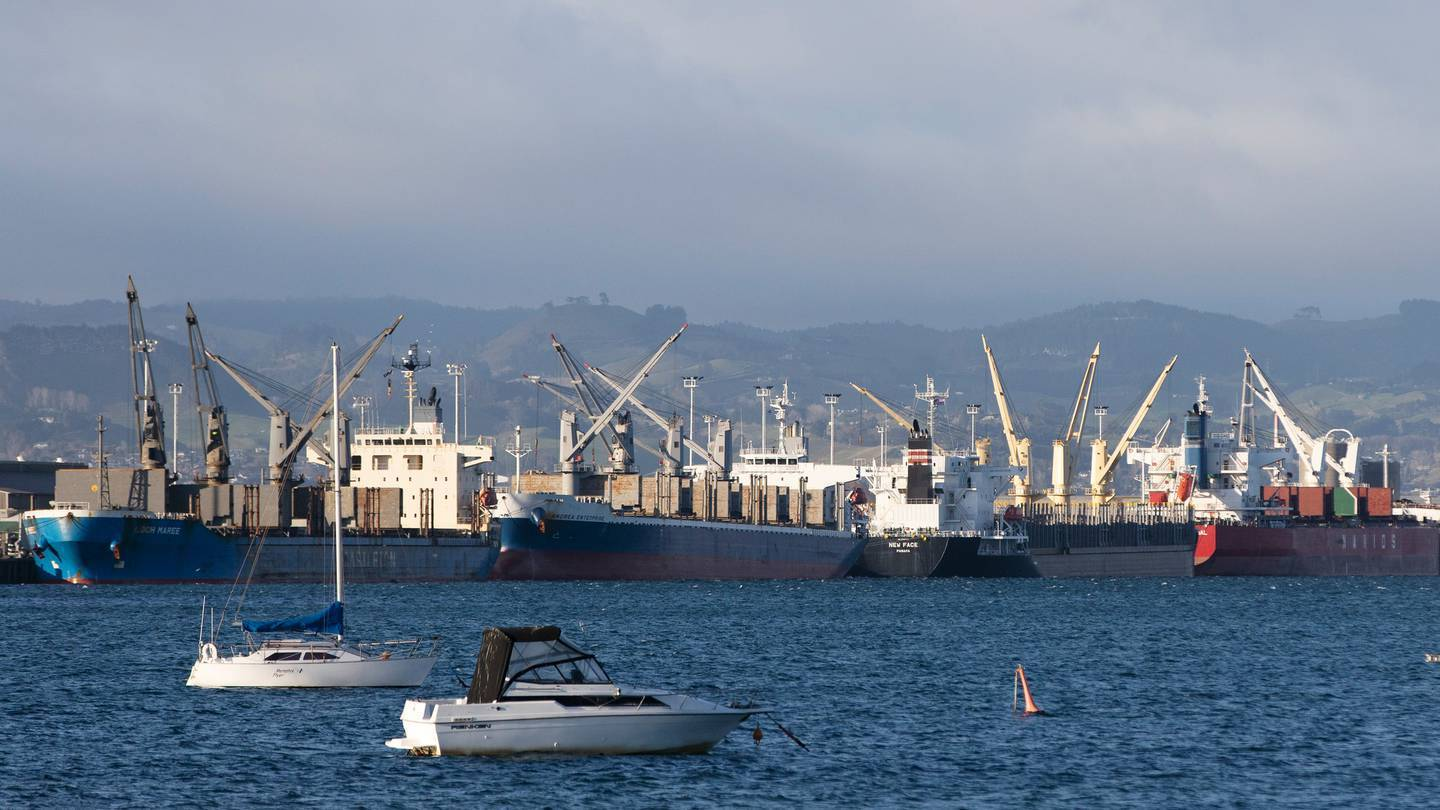 All international crews arriving in the Port of Tauranga now face a mandatory two-week quarantine. Photo / File