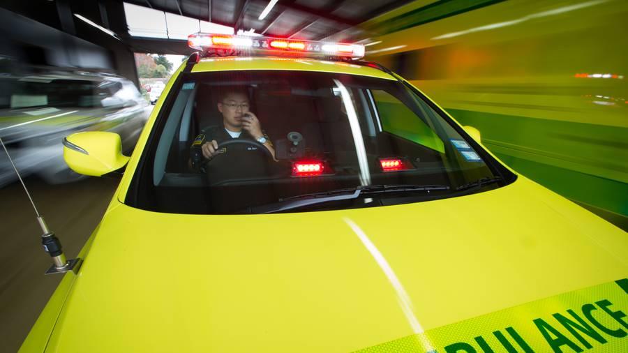 Hamilton man, 20, killed in Tamahere crash