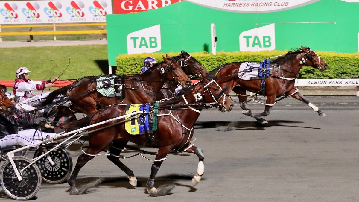Racing: Long odds amazing as Amazing Dream wins A$250,000 Rising Sun at  Albion Park in Brisbane - NZ Herald