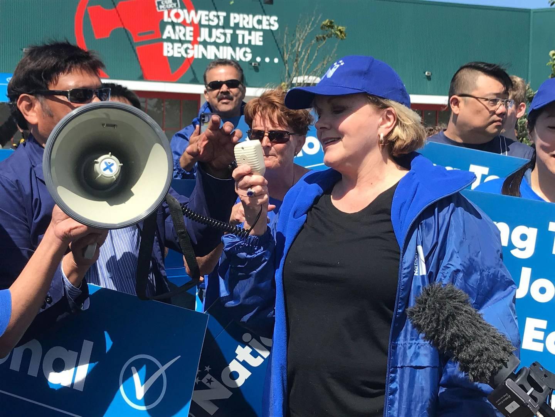 National leader Judith Collins. Photo / Jason Walls