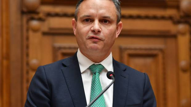 Green Party co-leader James Shaw. Photo / File