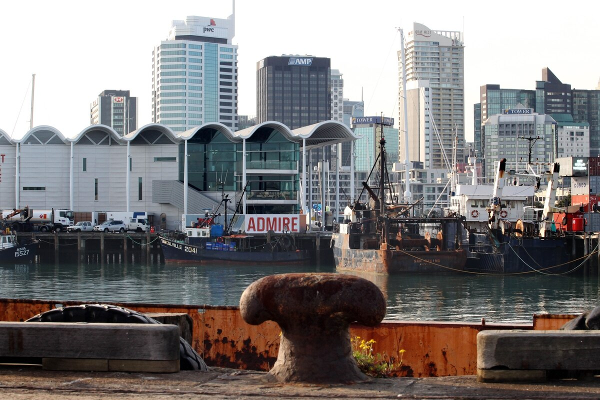 Could Auckland's Halsey Wharf host the next America's Cup?