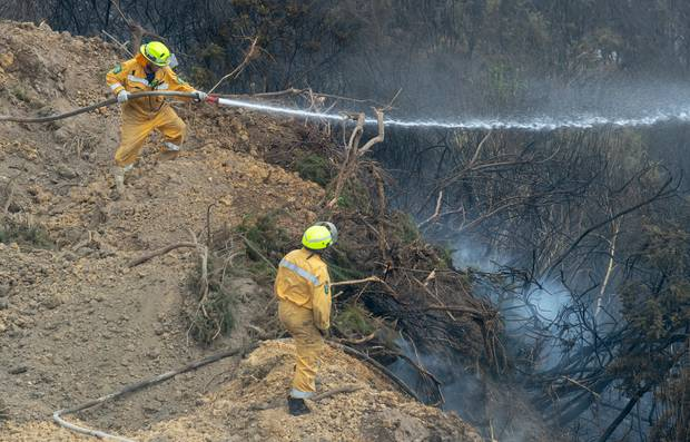 Rural firefighter Dave Houston manning a pump on the fringes of the Tasman bush fires at Teapot Valley near Nelson. Photo / Mark Mitchell