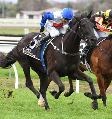 Racing: Isaac Lupton hoping for Cup windfall - NZ Herald