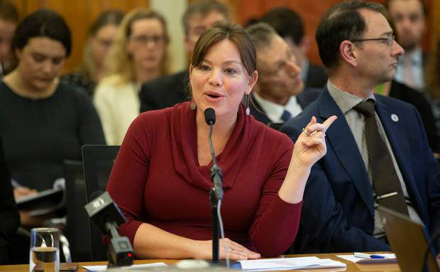 The plan, according to Associate Transport Minister Julie Anne Genter, will get more Kiwis into cleaner vehicles by reducing some of the cost burden. Photo / Mark Mitchell