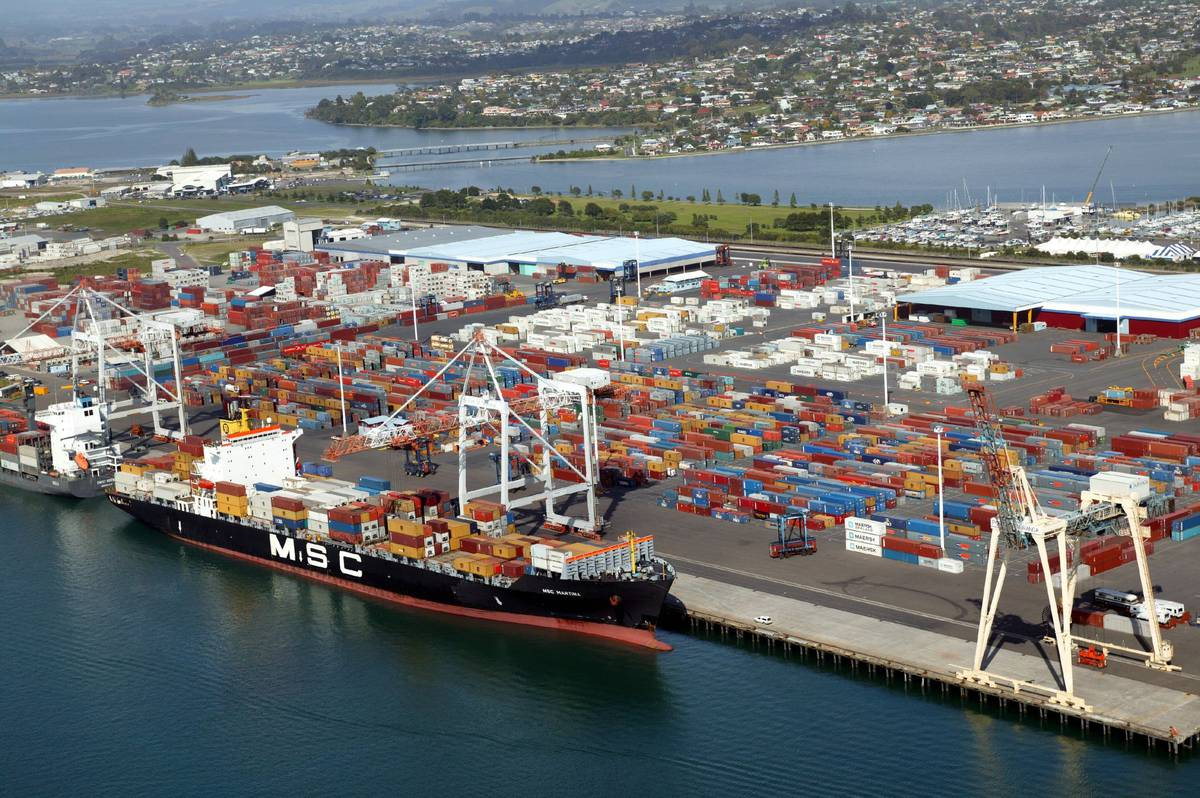 Oil spill: 2000 litres of oily sludge slushes into Tauranga Harbour