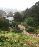 Slip at Ravenswood, Dunedin, has forced evacuations. Picture / Police