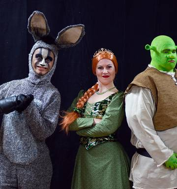 Shrek the Musical on stage - NZ Herald