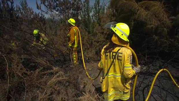 Fire Breaks being implemented by subscribed burning to give a 50 mtr strip for a fire break. Photo / Video Grab