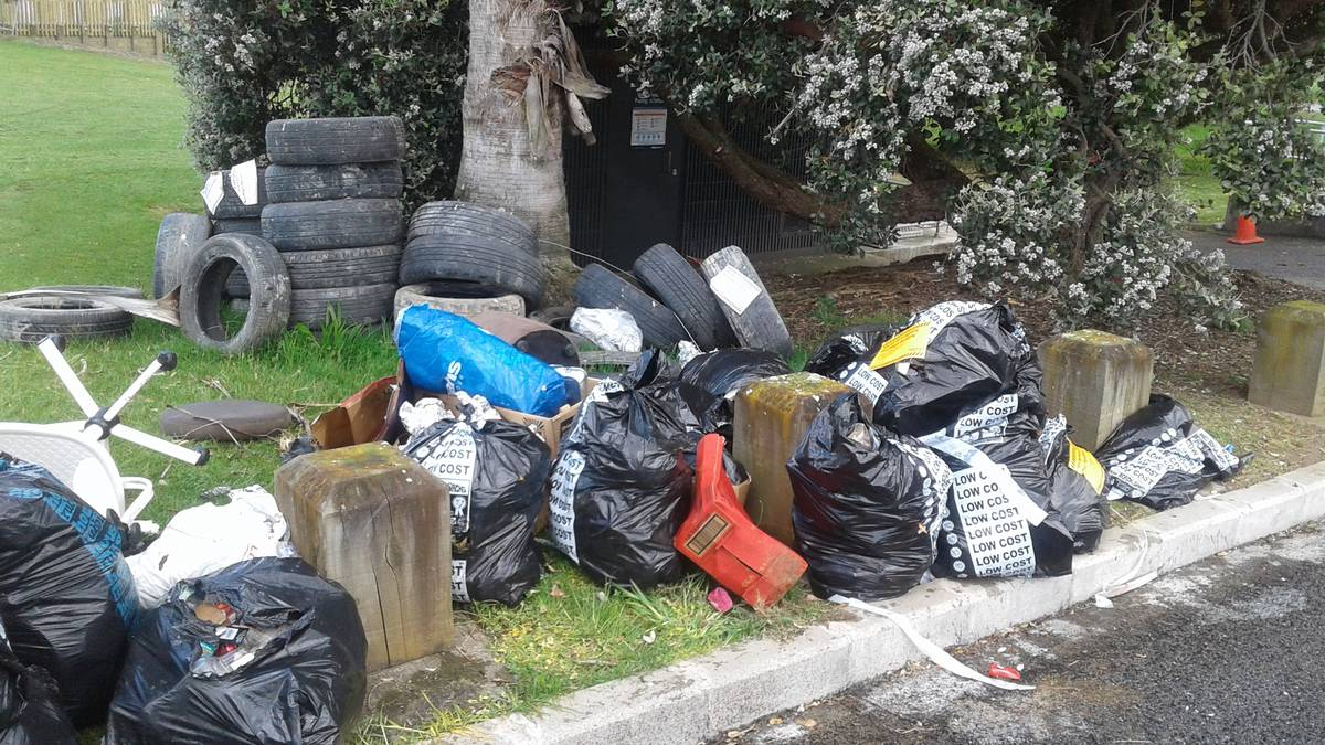 phil-goff-making-progress-on-illegal-dumping-but-not-confident-of-slapping-litter-fine-on-unruly-travellers