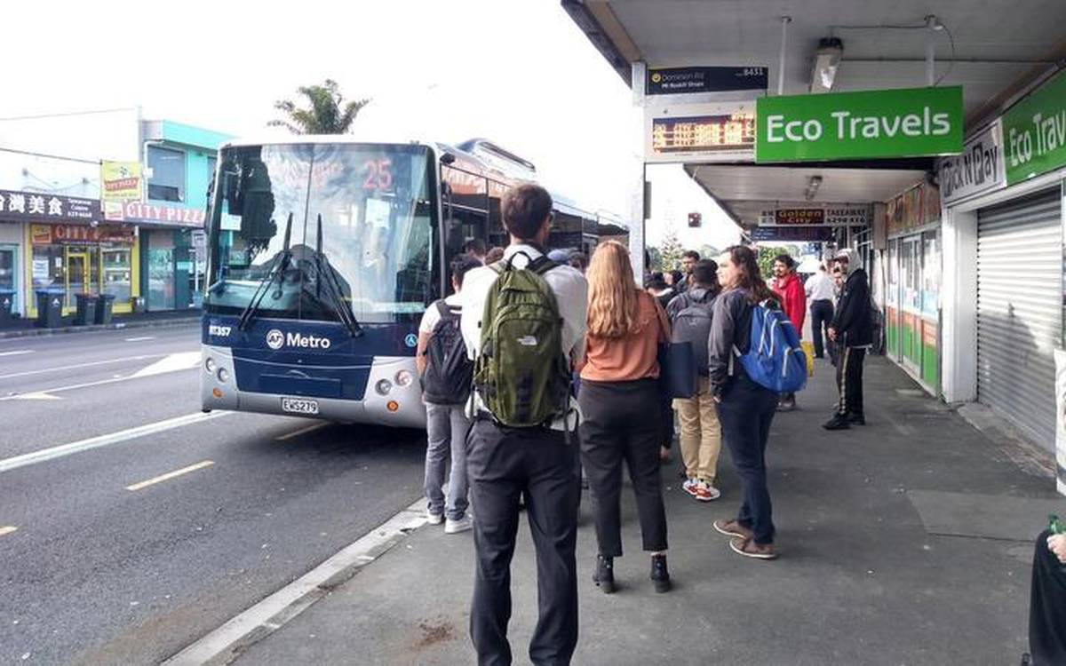 All Auckland bus services to resume from tomorrow morning
