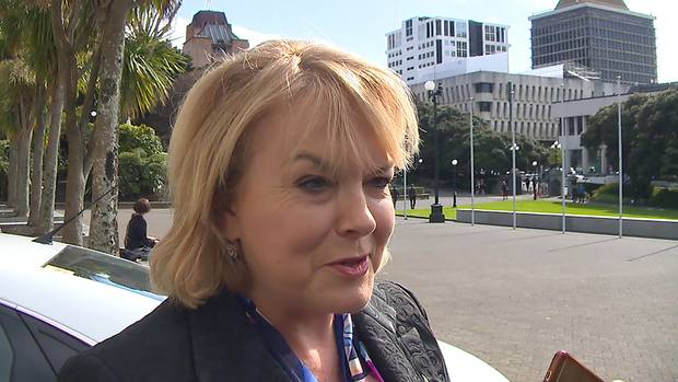 National's Housing spokeswoman Judith Collins the foreign buyer ban has become a 'buggers' mess'. Photo / File