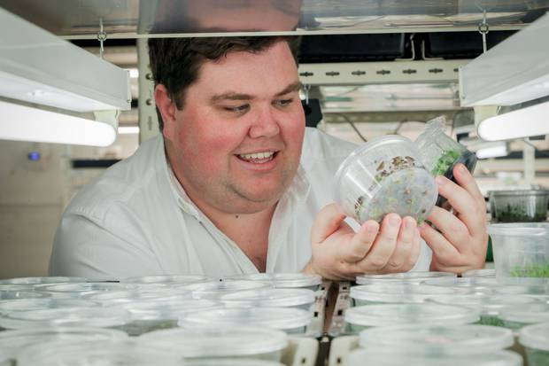 The tissue culture laboratory, which was bought from Peter Bennet, is set to be rebranded as Waimea Plant Laboratories Ltd. Photo / Warren Buckland