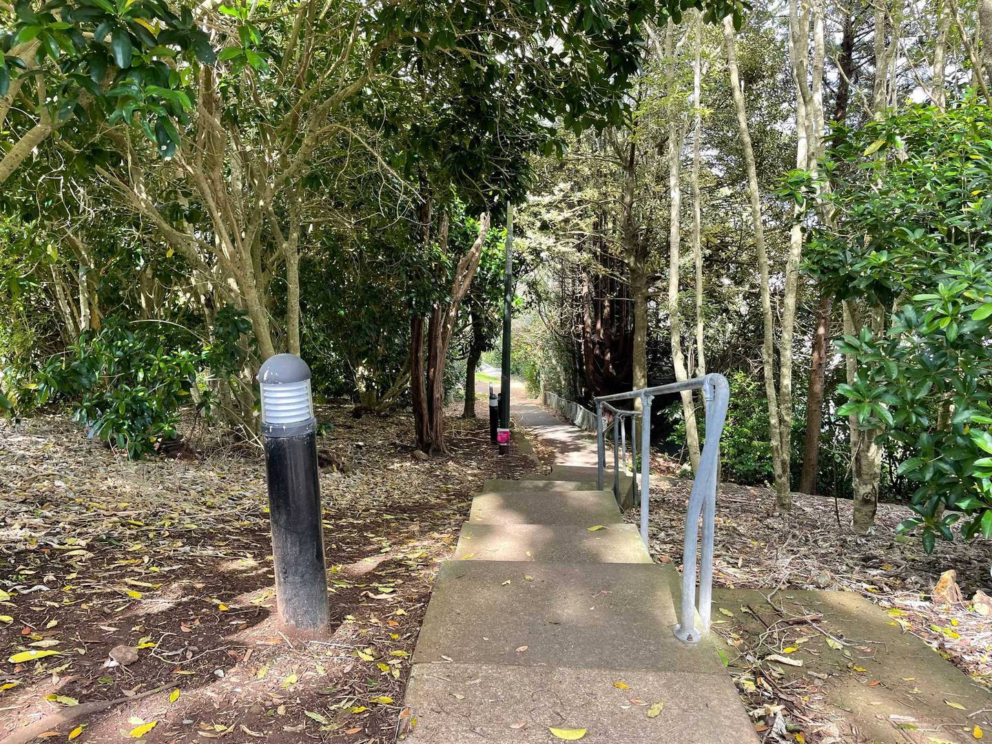 The footpath connecting Grande Ave with Summit Drive in Mt Albert, where Lena Zhang Harrap's body was found. Photo / NZME