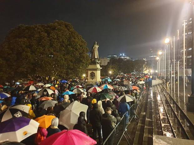 Protesters inside Parliament grounds in Wellington, on June 1. Photo / RNZ