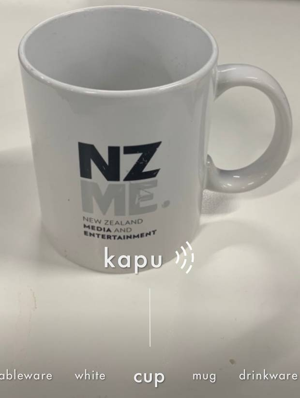 Using Spark's Kupu app to take a smartphone photo of an object, then get a translation.