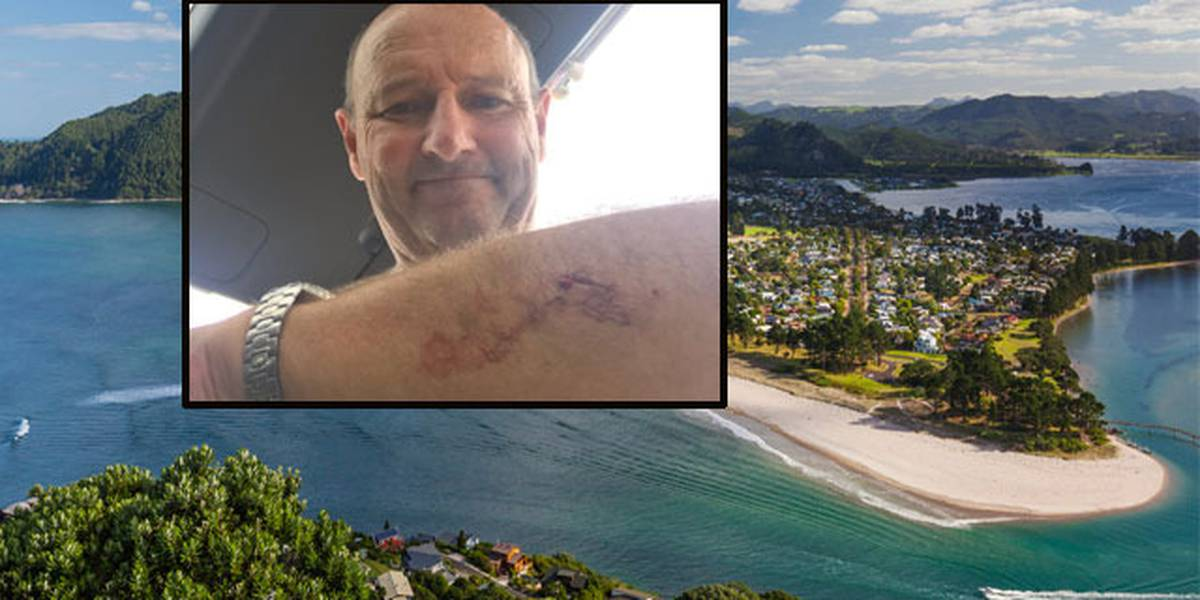Surfer fights off Great White shark at Pauanui Beach, Coromandel, by punching it in the eye after it latches onto his board