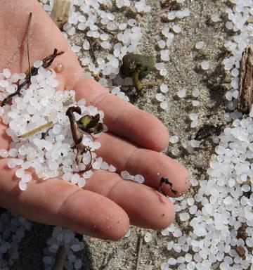 More Rena debris hits the coast - NZ Herald