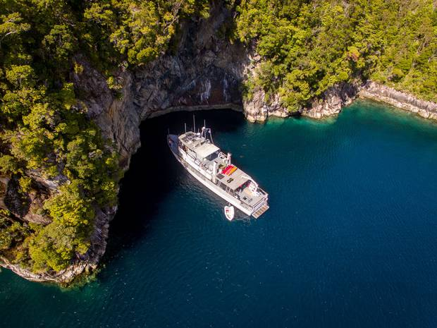The MV Flightless is an ex-Navy vessel now used by Fiordland-based Pure Salt for charters and conservation expeditions. Photo / Supplied