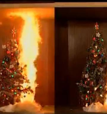 Christmas Tree On Fire.Christmas Trees Pose Fire Risk Officials Warn Nz Herald