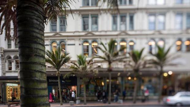 Nikau palms on Auckland's Queen St show natives are a genuine urban option. Photo File
