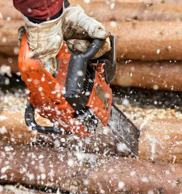 Log price collapse could impact jobs in New Zealand - NZ Herald