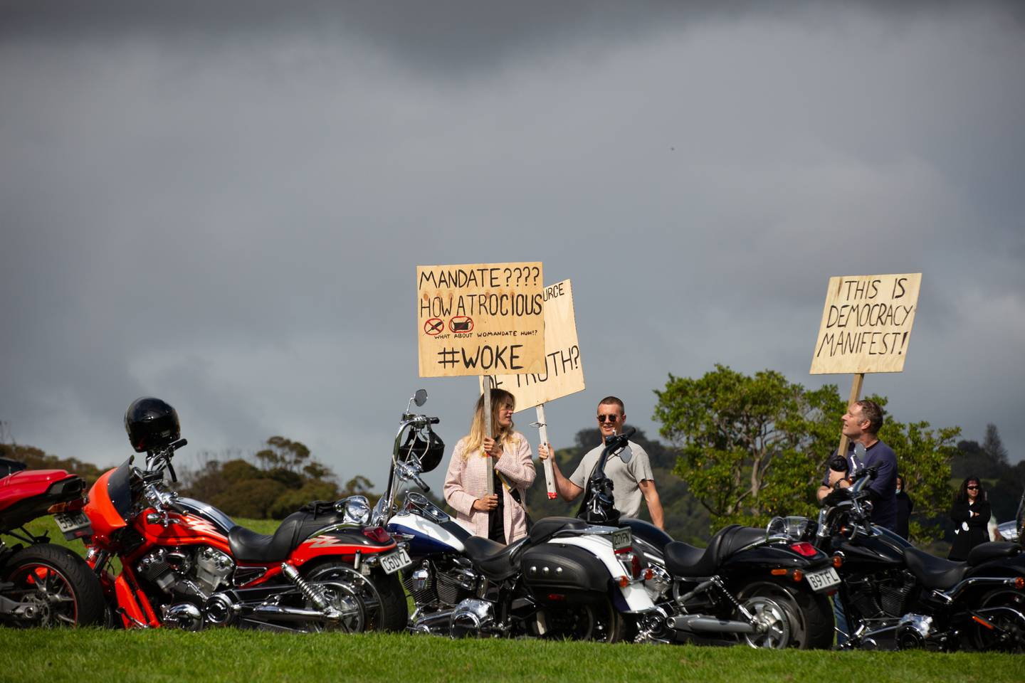 Police have laid charges following a mass antilockdown protest at Auckland Domain. Photo / Sylvie Whinray