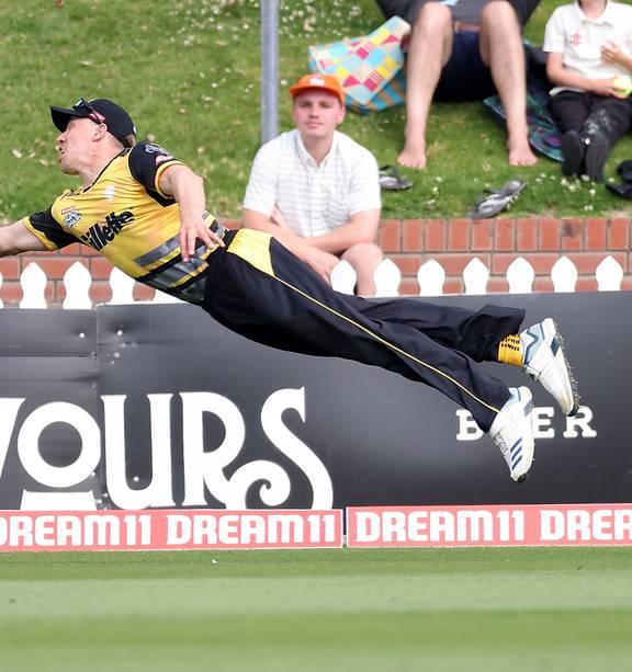 Cricket: Logan van Beek takes stunning catch as Wellington Firebirds beat Northern Knights in Super Smash - NZ Herald