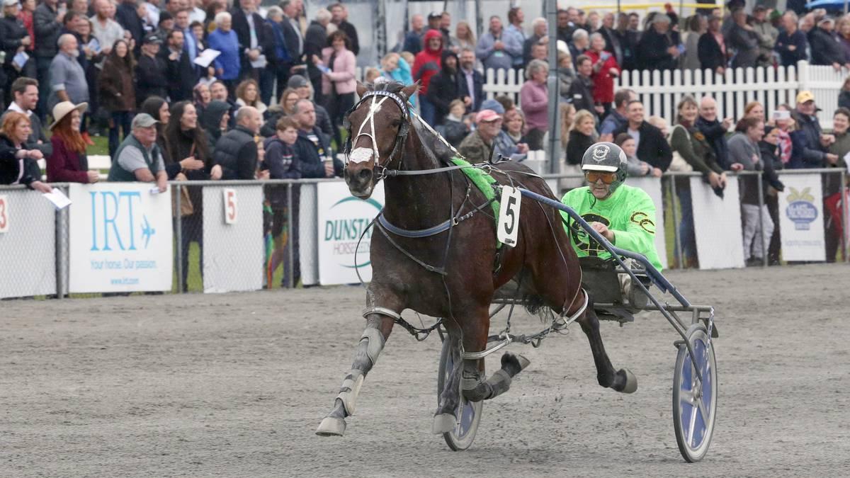 Horse racing: Harness racing eyes Million – NZ Herald