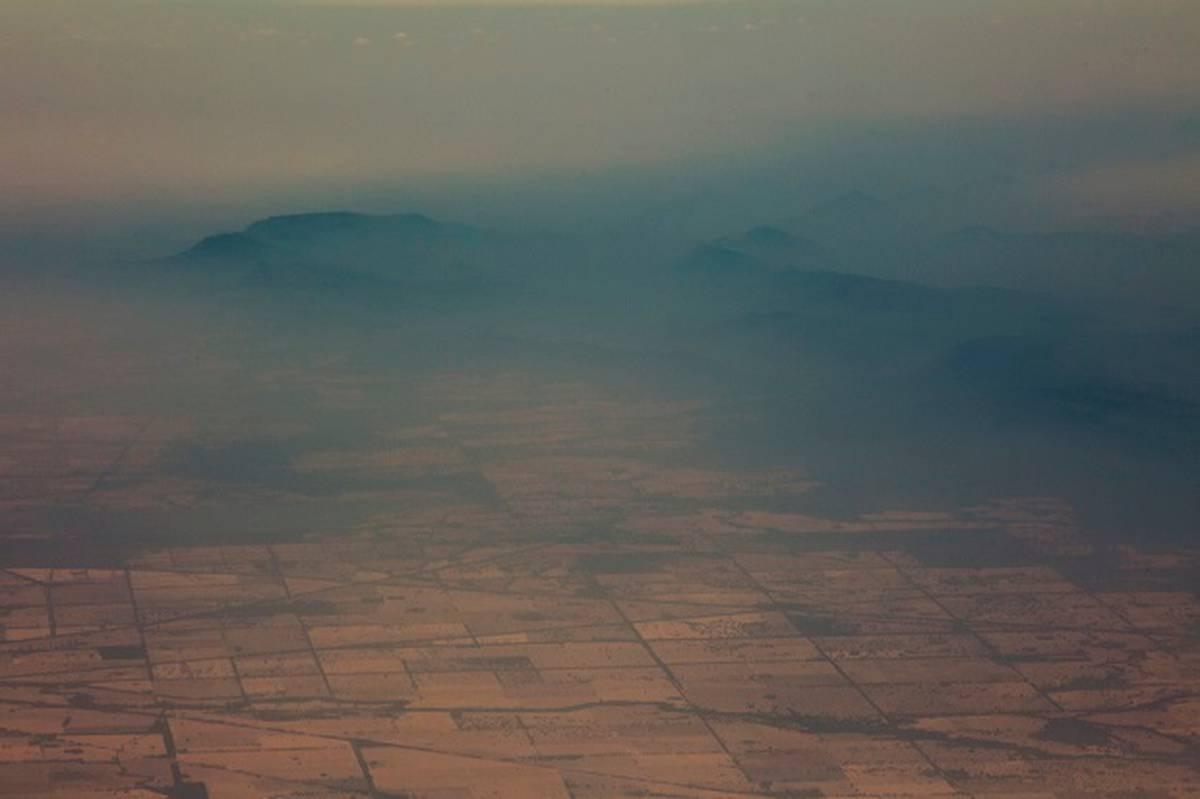 Australian bushfires Scientists seek rare species survivors amid flames