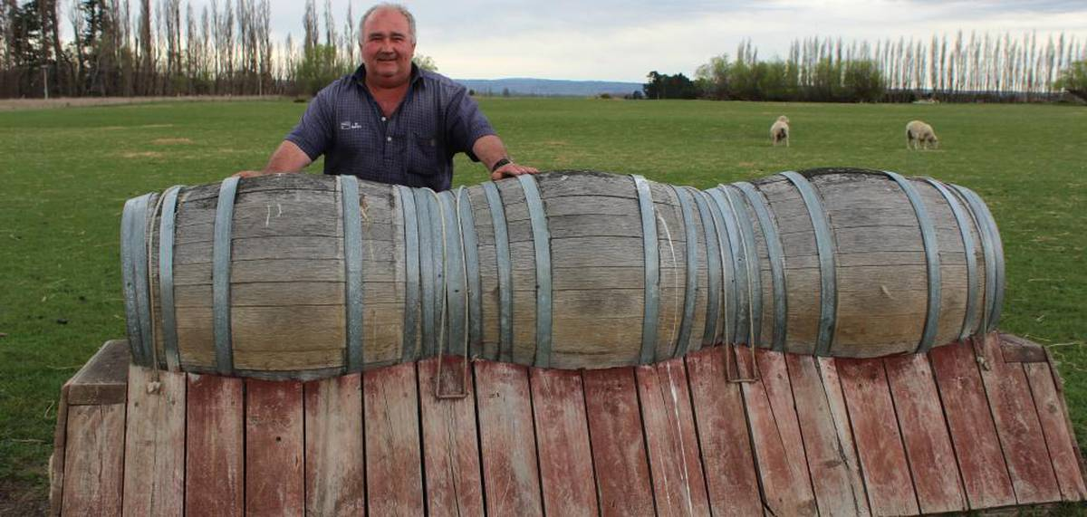 Making Horse Jumps From Banks And Tree Stumps Nz Herald