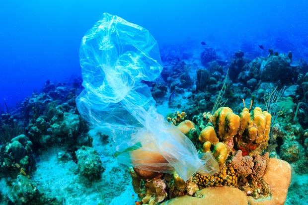 Around 12.7 million metric tonnes of plastic waste enters the ocean every year. Photo / 123RF