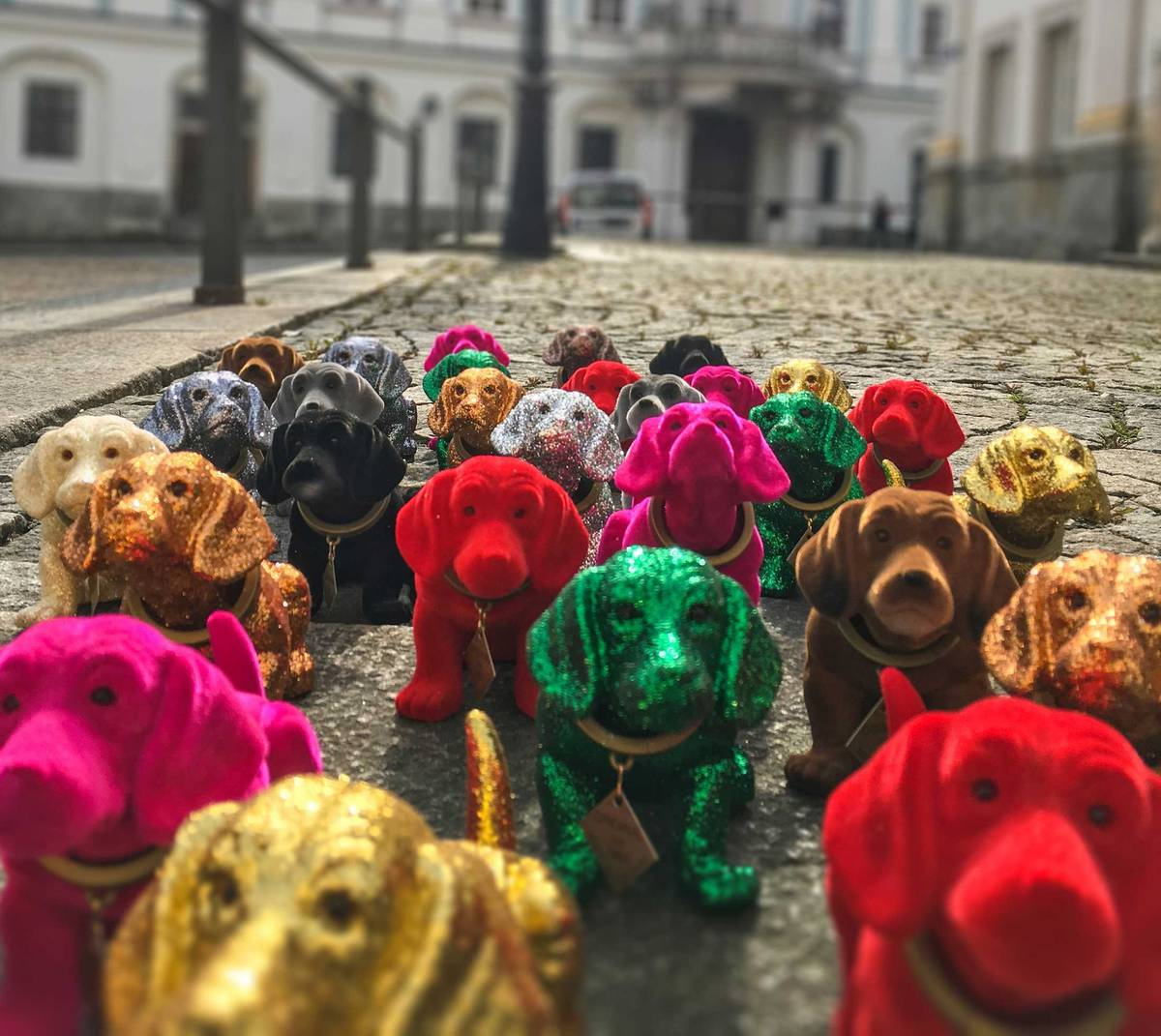 Dachshund get their own museum in Germany