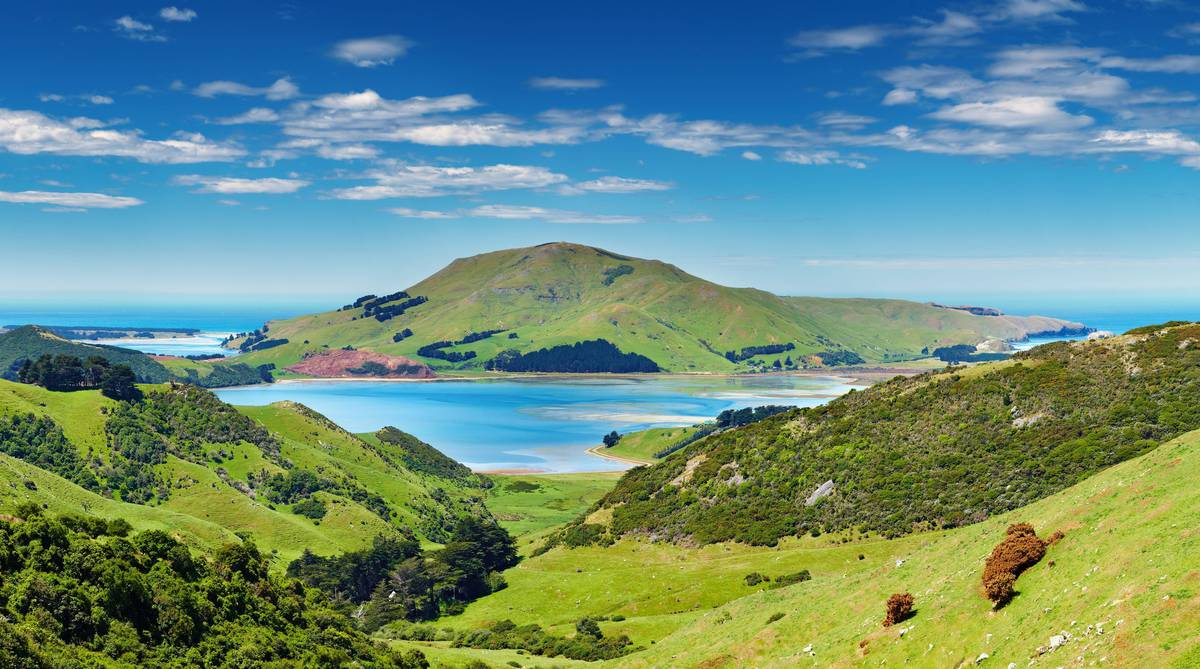 Nz Herald: Water Crisis Damages New Zealand's Clean Green Image